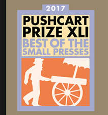 2017 Pushcart Prize nominees