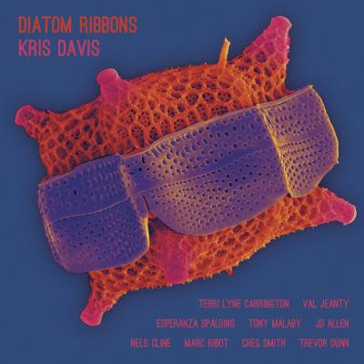 On the Turntable:  Diatom Ribbons, by Kris Davis